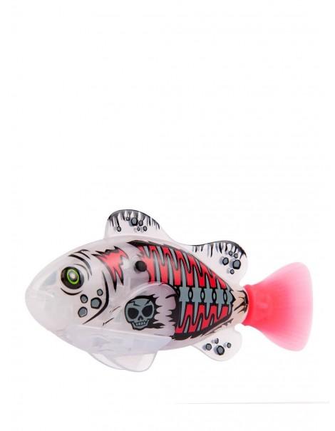ROBO FISH PIRATE - PIRATI WATER ACTIVATED